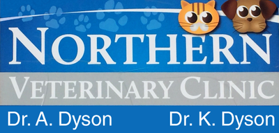 Northern Veterinary Clinic